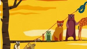 De balans van dierentuin GaiaZOO in Kerkrade