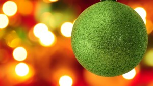 Zonnebloem Baexem en Seniorenvereniging vieren samen Kerst