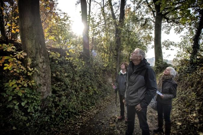 Op pad met de natuurgidsen van IVN: 'Deze paddenstoelen geven licht in het donker'