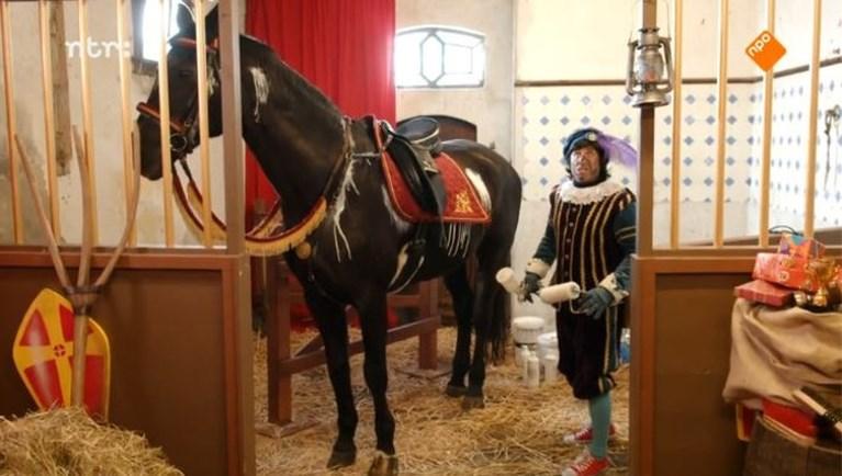Sinterklaas' paard Ozosnel is niet wit, maar zwart