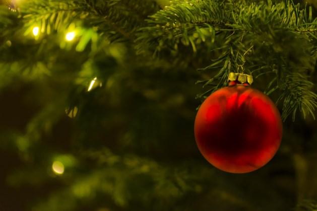 Kerstplanten en -artikelen verkoop voor KIKA in Eckelrade