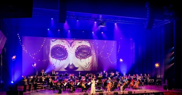Stem op 3 vastelaovesliedjes voor de medley van philharmonie zuidnederland