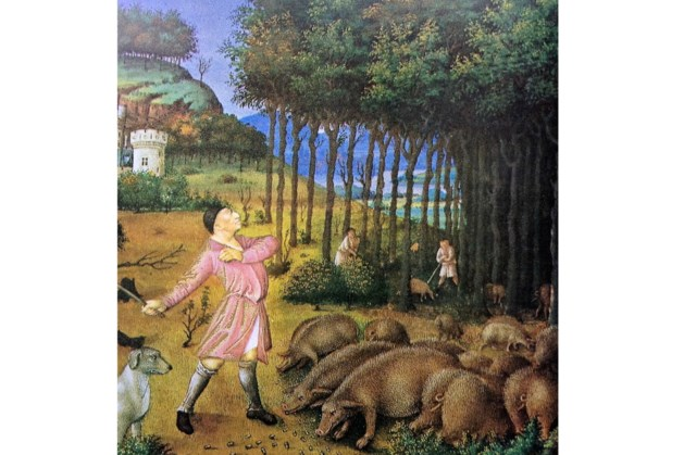 Lezing over de geschiedenis van de bossen in Horst