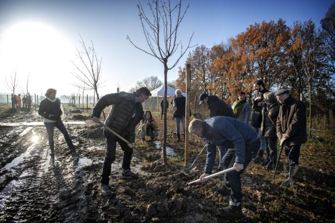 Kerkrade wil meer Levensbomenbossen