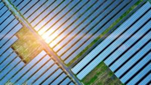 College Venray: geen onderzoek inzake zonneparken achtergehouden van gemeenteraad