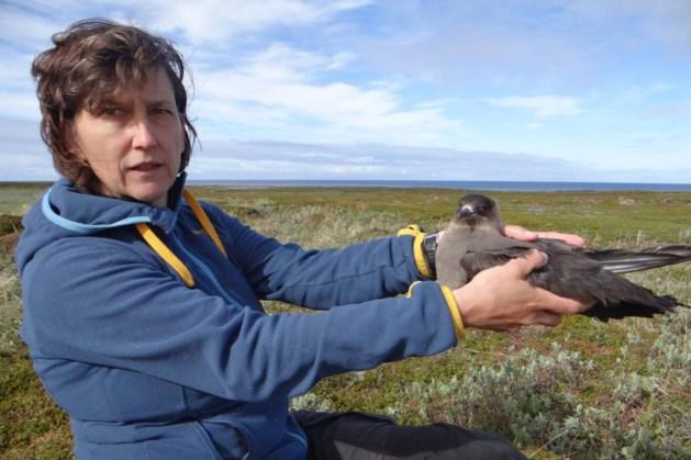 Heerlense vogelonderzoeker wint Herman Klompprijs