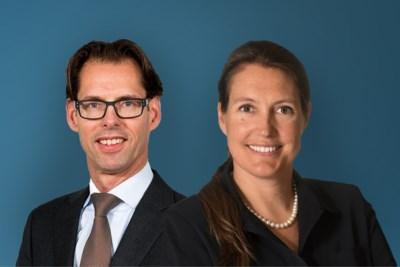'Een duo aan de leiding bij DSM is een logische keuze'