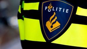 Politie Zwolle zoekt 'aso in dikke Mercedes die hond dood reed'