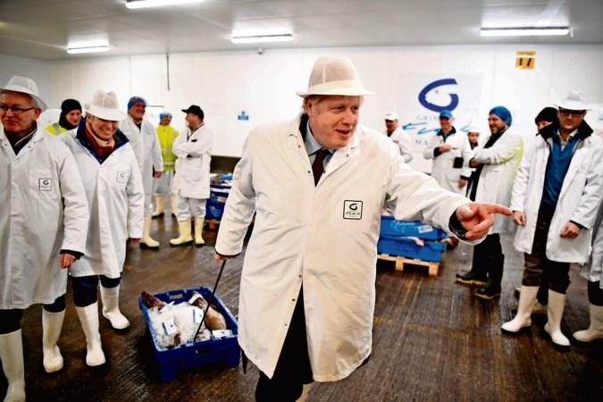 'Natuurlijk praat Boris Johnson onzin, maar ik stem wel op hem'