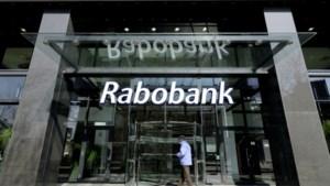 Melkveehouders klagen Rabobank aan om financiële problemen