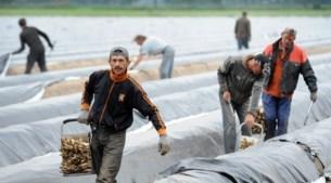 'Kwart van personeel is migrant'