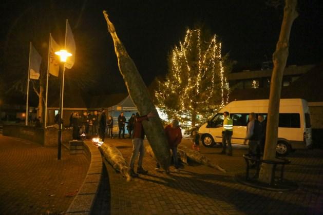 Gemeente Nederweert deelt gratis kerstbomen uit