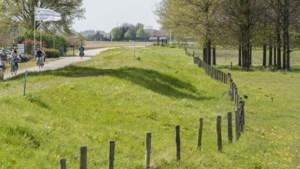 'Limburgse dijken moeten lager worden dan gepland'