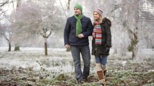 Kerstwandeling door bossen van de Walsberg en het Beesels Broek