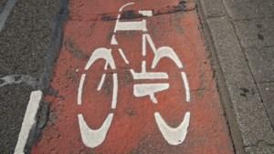 Hoge score fietsersbrug over de Maas: 'Impuls voor de omgeving'
