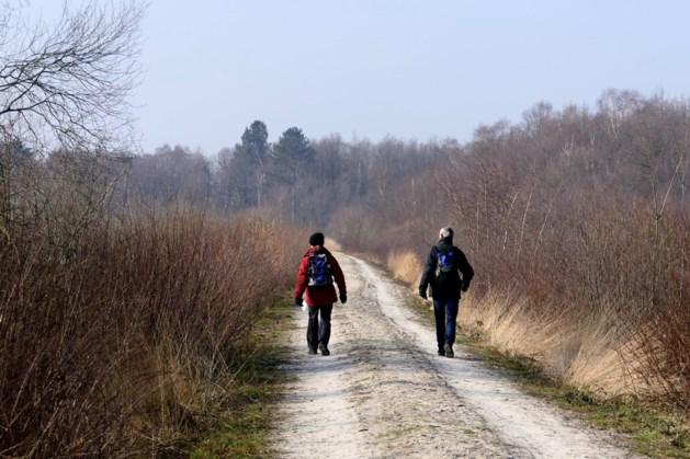 Wandelen door De Grote Peel, een sportief begin van het nieuwe jaar