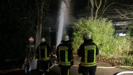 Grote brand in apenverblijf dierentuin Krefeld: alle dieren overleden