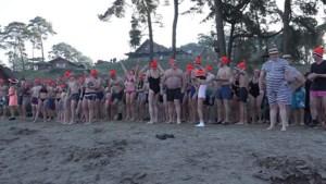 Video: Honderden koele kikkers trotseren koude water bij nieuwjaarsduiken
