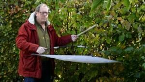 Dwars door Limburg op zoek naar lieveheersbeestjes en kapoentjes