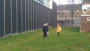 Kerstbomenbos in centrum van Heerlen: in de stadstuin mag iedereen zijn kerstboom komen planten