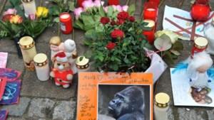 Inzamelactie voor dierentuin Krefeld vanwege omgekomen apen