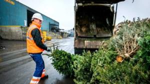 Vaals haalt vrijdag afgedankte kerstbomen op