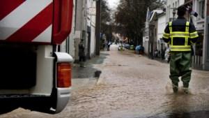 Waterschap lanceert website met tips om wateroverlast het hoofd te bieden