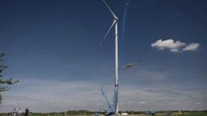 Wethouder Freed Janssen over energie: 'We hebben de wind mee'