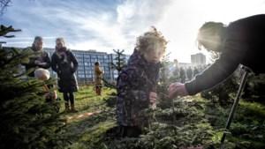 Heerlense Stadstuin is weer iets mooier met de kerstbomenparkeerplaats