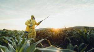 Risicovol landbouwgif thiacloprid wordt verboden in de Europese Unie