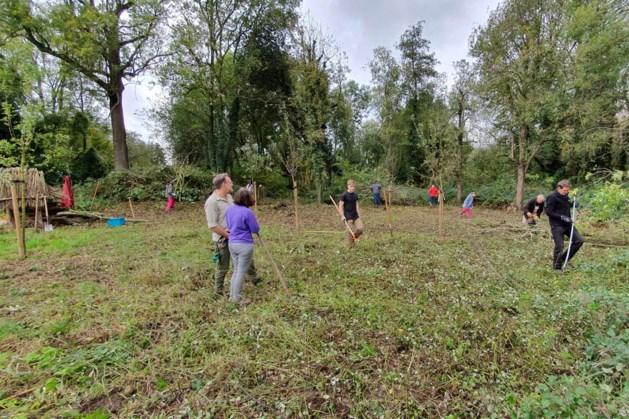 Hulp nodig bij opknappen oude boomgaard bij Nuth