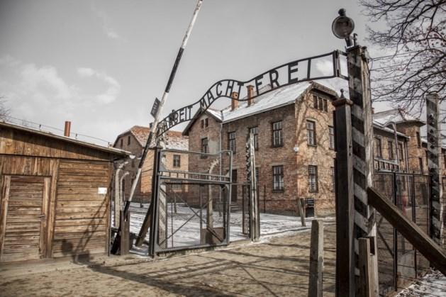 Steen uit lichtmonument Holocaust tijdelijk in Roermond