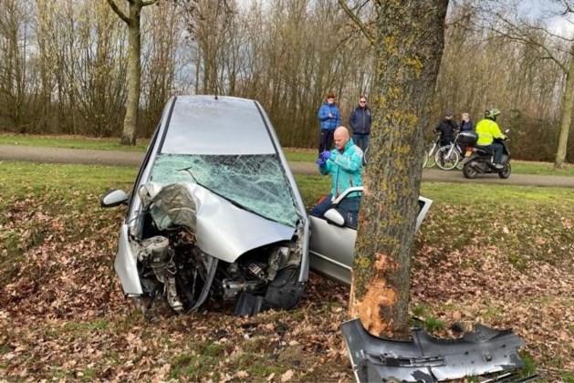 Auto raakt van de weg en botst tegen boom: een gewonde in Susteren
