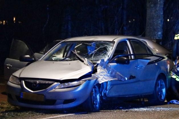 Auto knalt tegen boom in Gennep, inzittende raakt gewond
