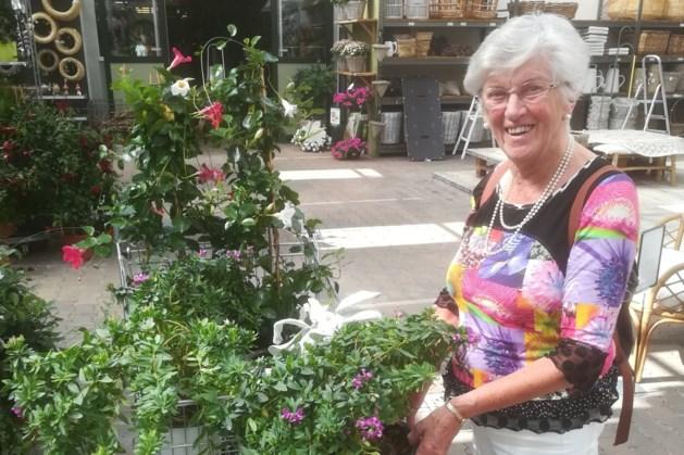 Wensdroom 82-jarige komt uit in Dominicanen Maastricht: werken in een boekwinkel