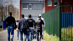 Migrant zet woningmarkt verder onder druk, vreest Nederlander