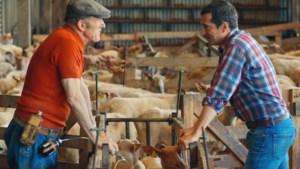 Au Nom de la Terre: concurrentie, regels en pech funest voor kleine boer