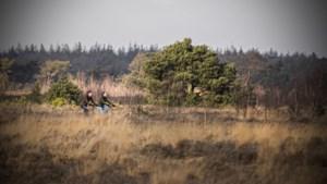 Uitfietsen: de elementen hebben vrij spel op de heide in Limburg en Brabant