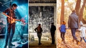 Dit zijn de 5 leukste uitjes dit weekend in Midden-Limburg