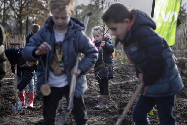 Ook Gronsveld en Sint Geertruid krijgen Tiny Forest