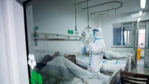 Live: Australische wetenschappers kweken het coronavirus in laboratorium