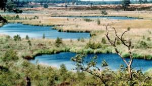 Natuurorganisaties Limburg uiten kritiek op stikstofplan provincie