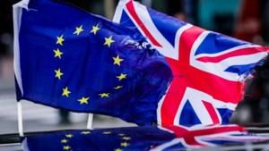 Branchevereniging logistiek: er mogen absoluut geen importheffingen en importquota komen na Brexit