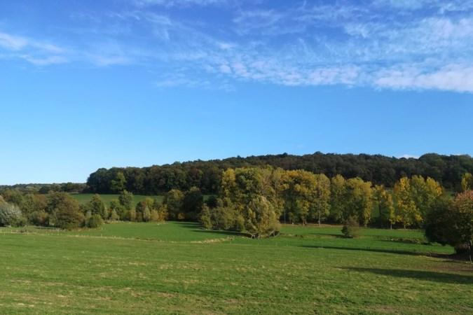 Honderdduizend bomen en struiken erbij in Gulp- en Geuldal