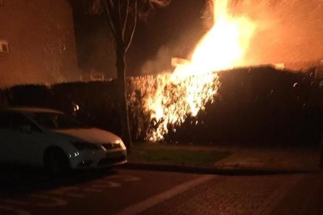Jongens steken heg in brand: auto's op het nippertje gered