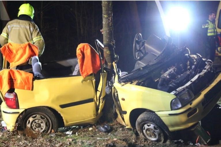 Auto botst hard tegen boom: bestuurder zwaargewond