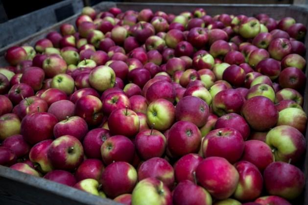 Gratis appels voor leerlingen De Maaskei Stein