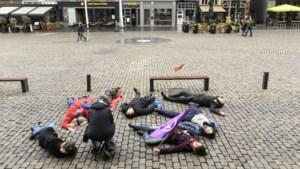 Actievoerders houden voor de eerste keer <I>'die-in'</I> op Roermondse Markt