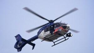 Klopjacht met politiehelikopter en hond op inbrekers tuinbouwbedrijf
