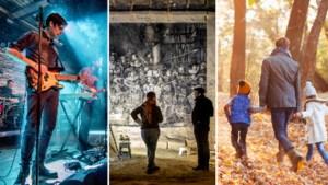 Dit zijn de 5 leukste uitjes dit weekend in de regio Maastricht / Heuvelland